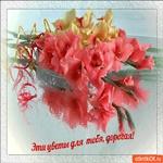 Эти цветы только для тебя дорогая