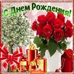 С Днём Рождения Поздравляю