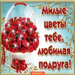 Красивые цветы тебе любимая подруга