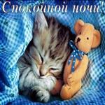Желаю тебе спокойной ночи и сладких сновидений
