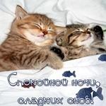 Спокойной ночи! Пусть ночь подарит хороший отдых