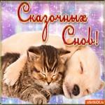 Спокойной ночи! Всем сладких снов!