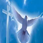 Боже спаси и сохрани