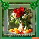 Желаю тебе хорошего дня