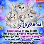 Здоровья счастья и добра всем друзьям желаю я!
