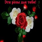 Розы для тебя!