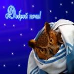 Спокойной ночи! Волшебных вам снов!