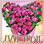 Классные цветы для тебя