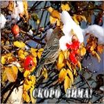 Поздравительная открытка скоро зима