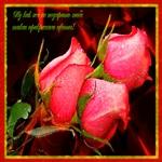 Красивые цветы для красивой женщины