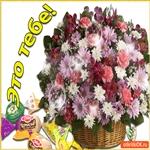 Прекрасные цветы для вас